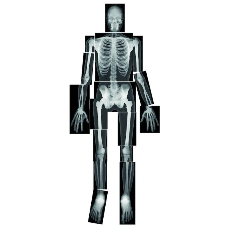 Žmogaus kūno nuotraukų rinkinys