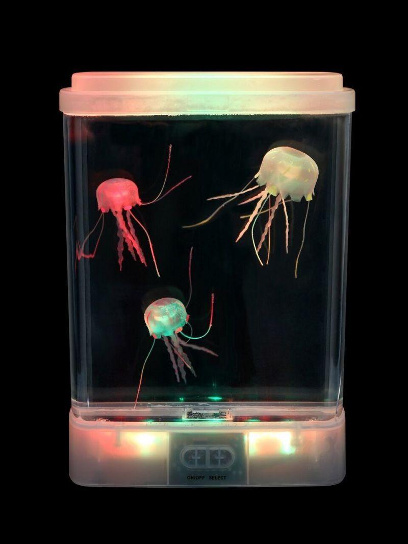 Šviečiantis akvariumas su medūzomis
