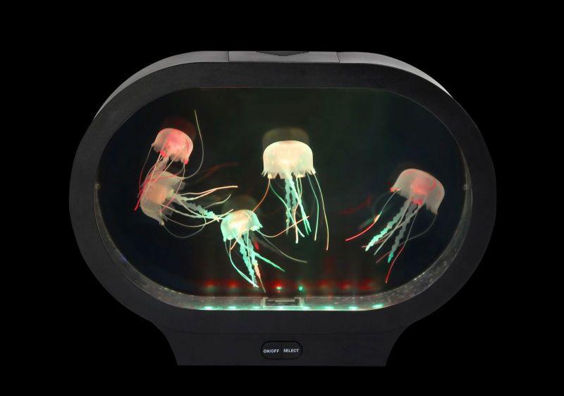 Stalinis akvariumas su medūzomis