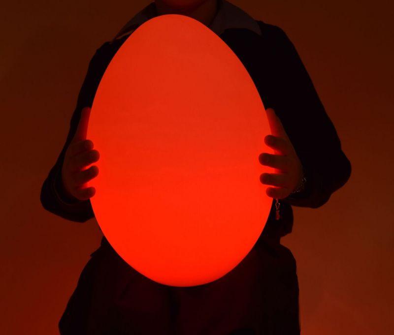 Spalvas keičiantis kiaušinis