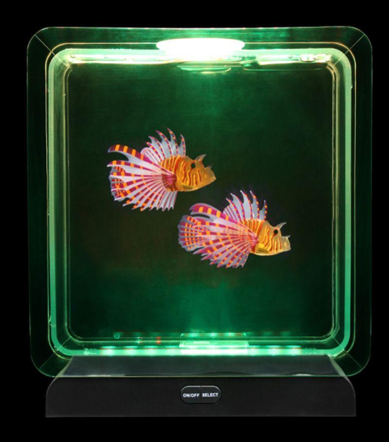 Tropinių žuvyčių akvariumas