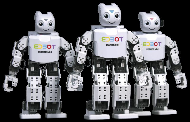 "Programavimo robotas ""Edbot"""